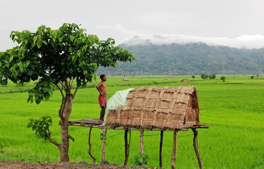 印度看病不用愁,绘佳医疗帮助你-绘佳医疗