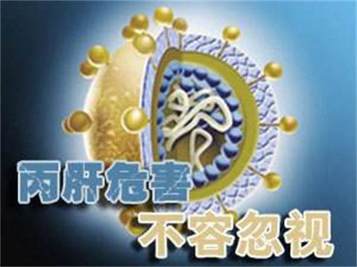 丙肝病毒定量检测