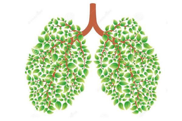 易瑞沙治疗肺癌